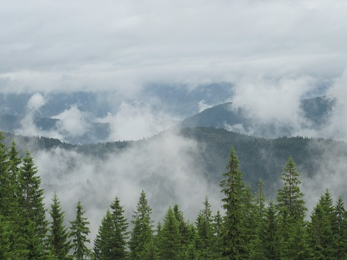 9 - Горы (дымят) после дождя... Нет, это не Скалистые гори и не Альпы! Это наши Карпаты!