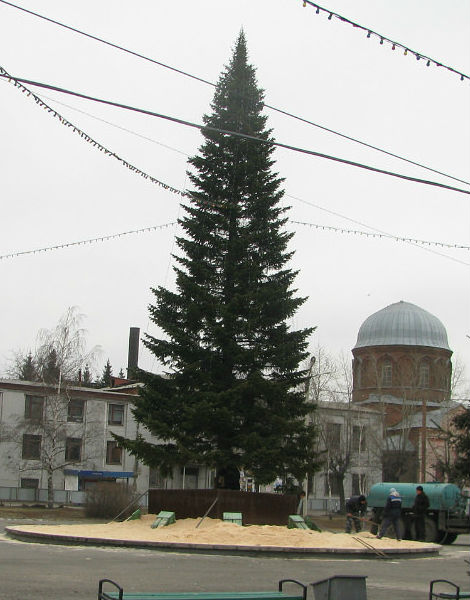елка в Бийске 2013