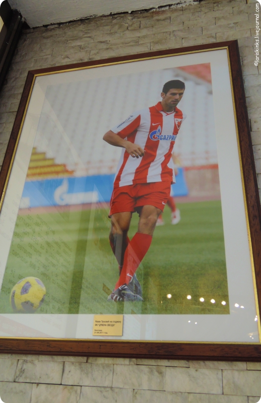 музей Црвена Звезда на стадионе Маракана в Белграде 10