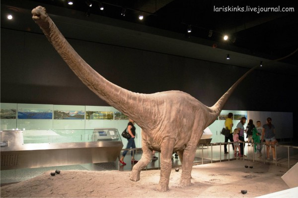 Музей Естествознания Нью-йорк5