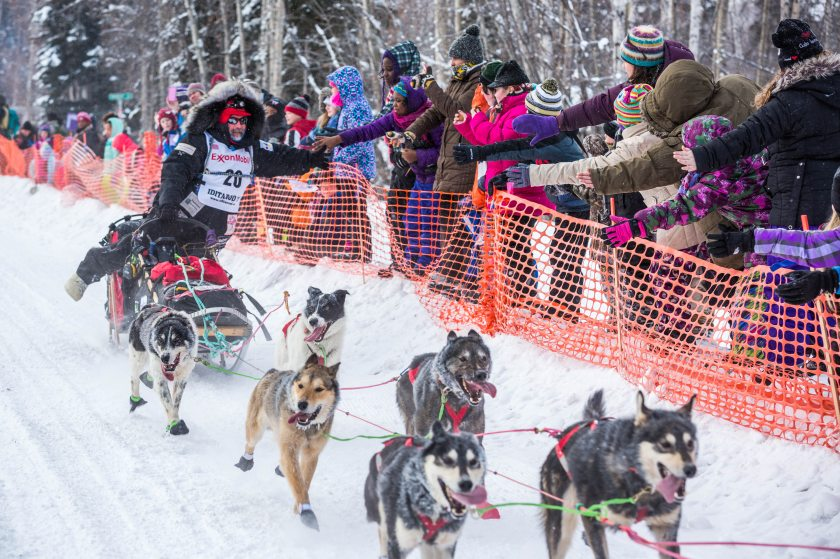 2015 Iditarod Fairbanks 13 - 20150309