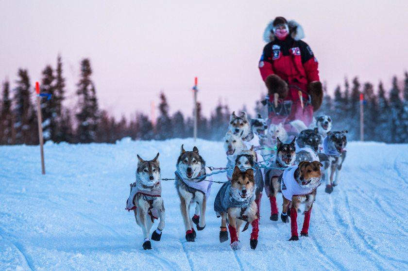 2015 Iditarod Huslia 17 - 20150313