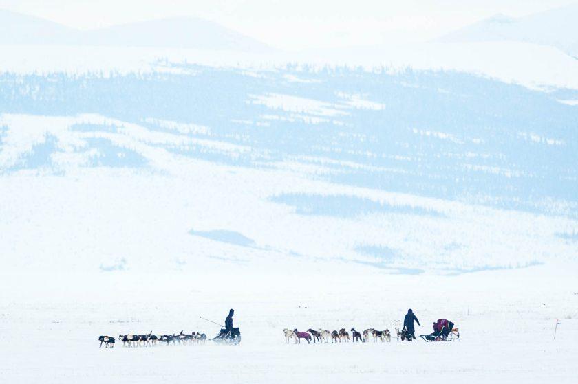 2015 Iditarod Koyuk 01 - 20150316