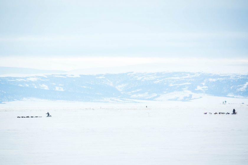 2015 Iditarod Koyuk 02 - 20150316