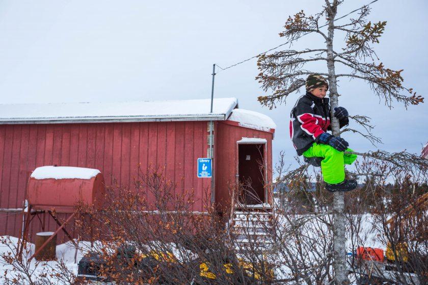 2015 Iditarod Koyuk 09 - 20150316
