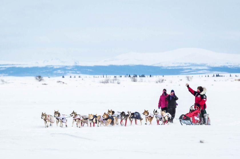 2015 Iditarod Koyuk 21 - 20150316