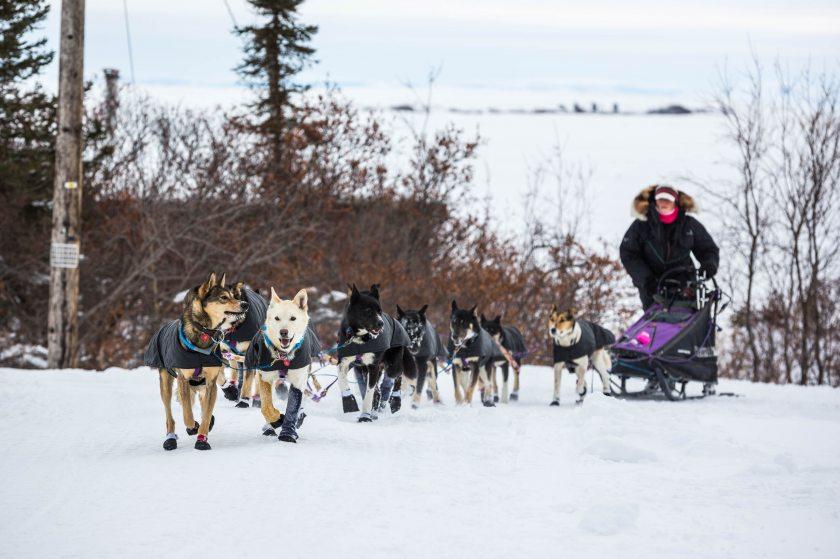 2015 Iditarod Koyuk 27 - 20150316