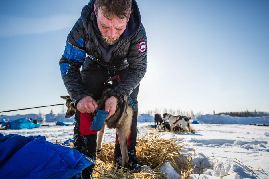 2015 Iditarod Manley 15 - 20150310