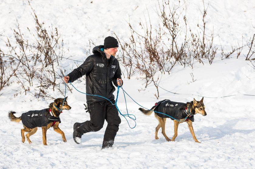 2015 Iditarod White Mountain 18 - 20150317