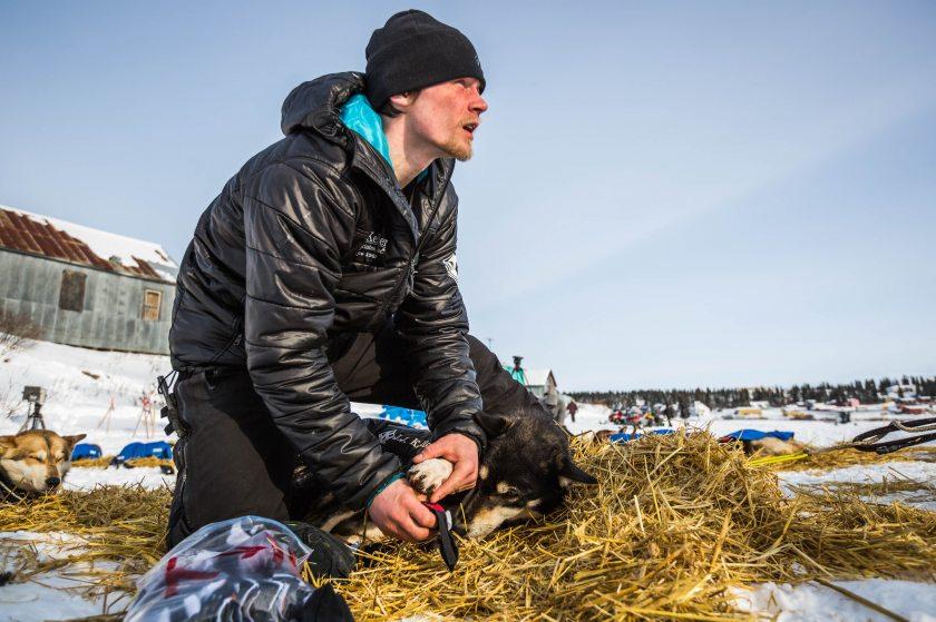 2015 Iditarod White Mountain 19 - 20150317