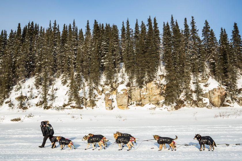 2015 Iditarod White Mountain 22 - 20150317