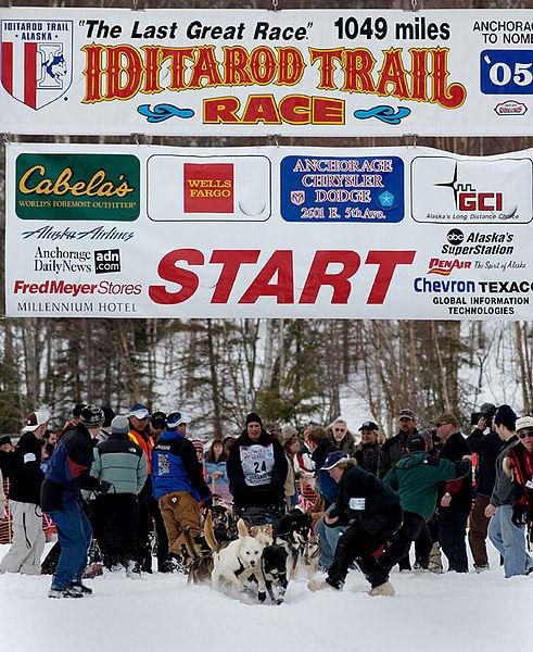 491px-Iditarod_2005_-_Knolmayer_start_in_Willow