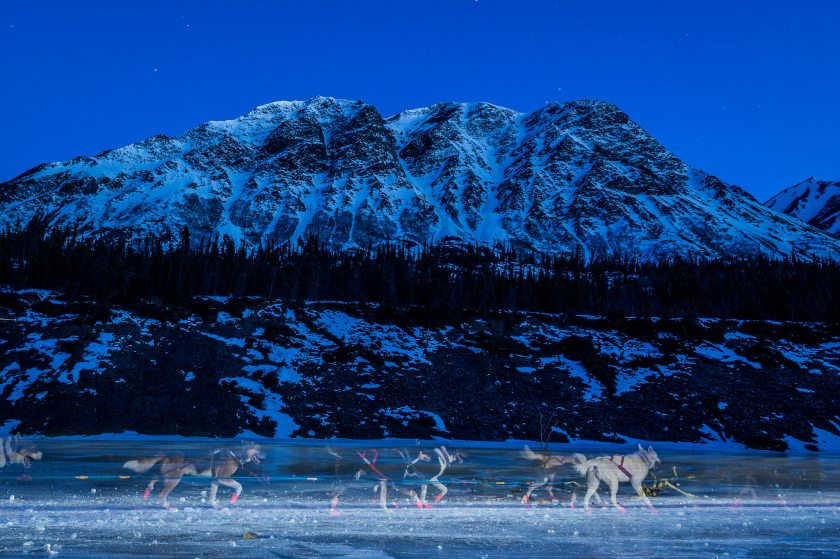 2014 Iditarod Dalzell Gorge Rohn 08