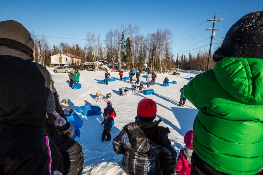 2014 Iditarod Galena 05