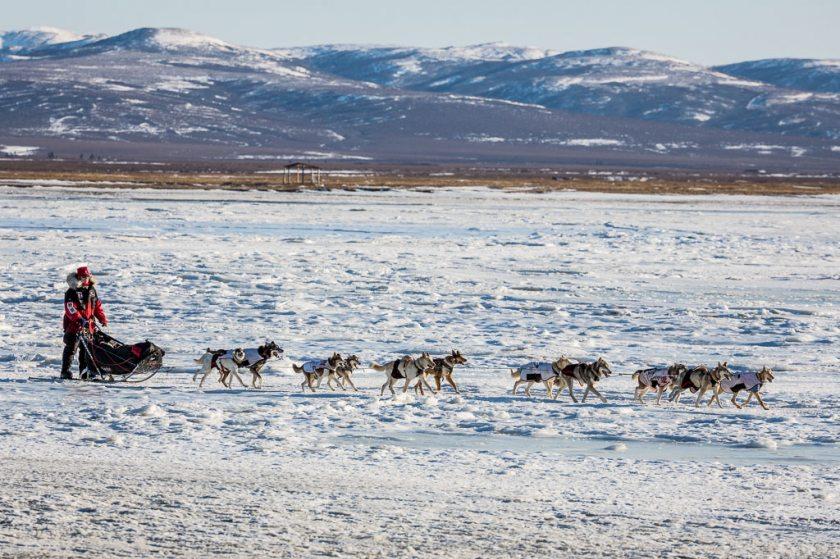 2014 Iditarod Kaltag Unalakleet 11