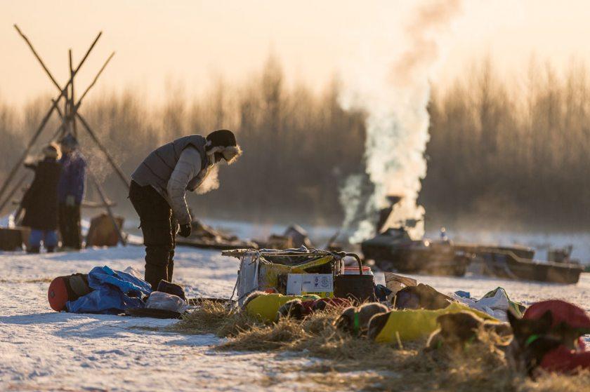 2014 Iditarod Nikolai 2 02