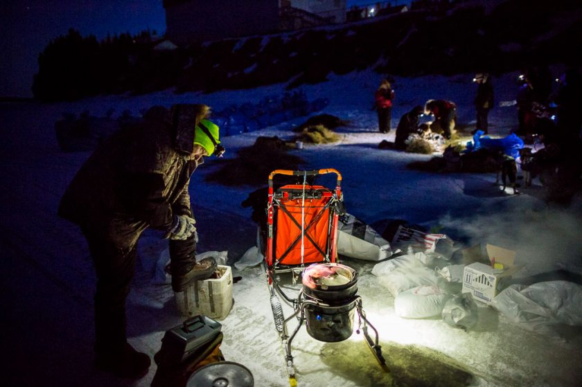 2014 Iditarod White Mountain 08