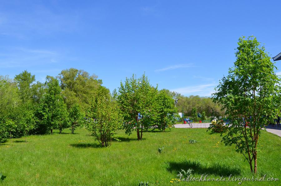 теплая весна 139.jpg