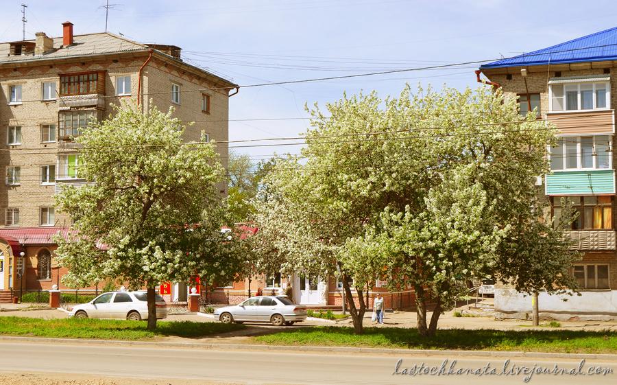 теплая весна 153.jpg