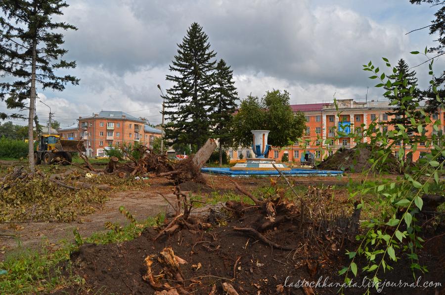 огород и ремонт площади 377.jpg