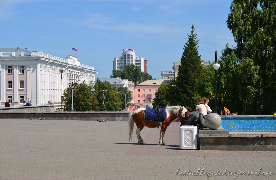 Барнаул 441.jpg