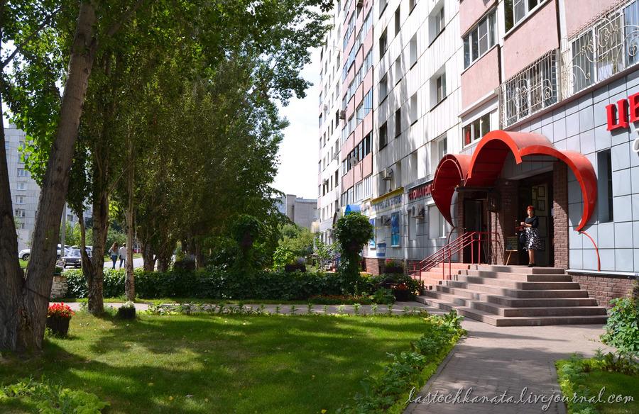 Барнаул 486.jpg