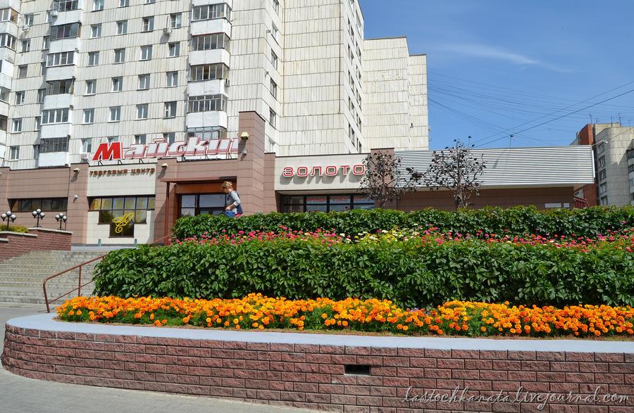 Барнаул 516.jpg