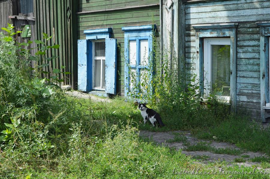 Барнаул 546.jpg