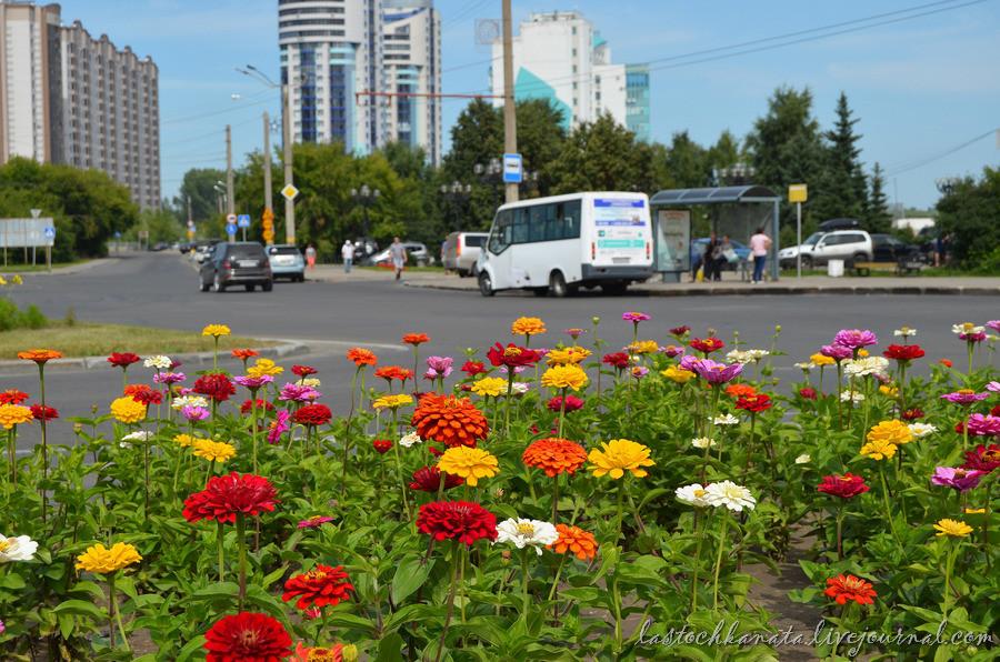 Барнаул 670.jpg