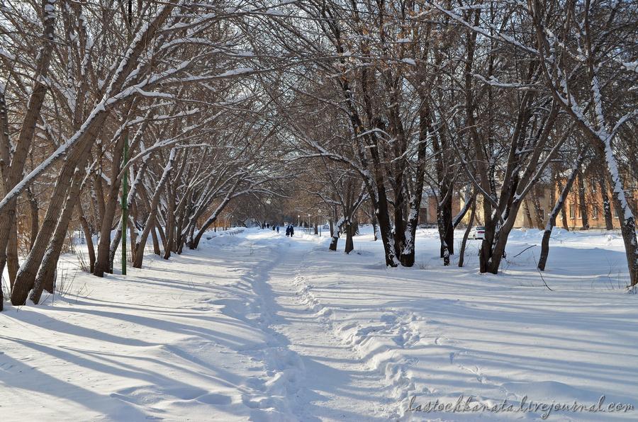 прогулка зима.jpg
