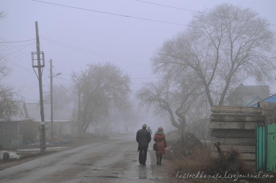 Светка и туман 005.jpg
