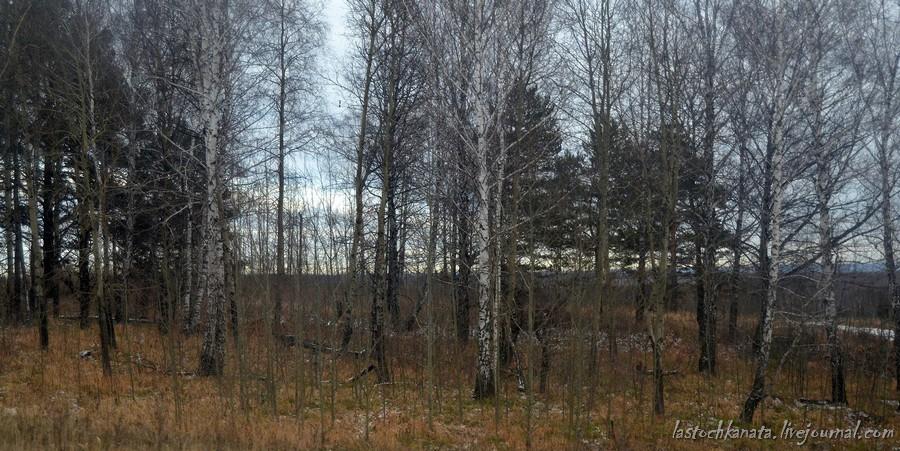 пресс-тур новосибирск-красноярск 580.jpg