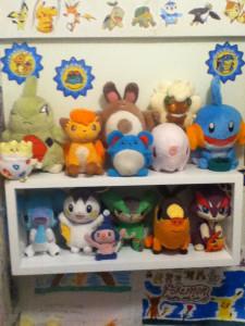z shelf