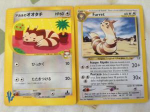 furret cards.jpg