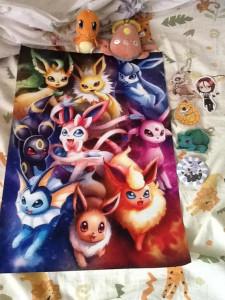 toracon gets pokemon