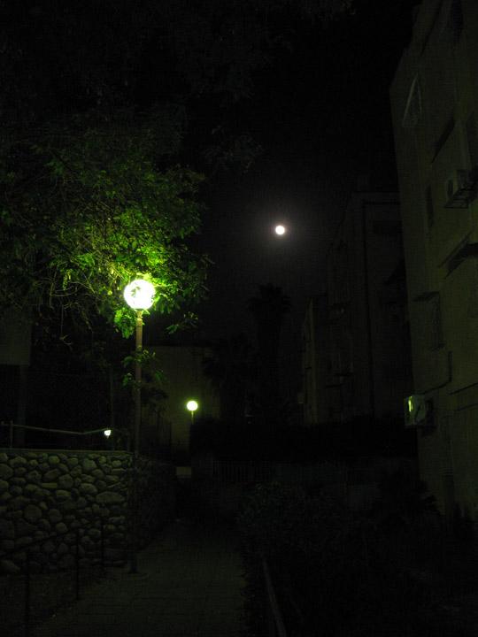 luna_4113