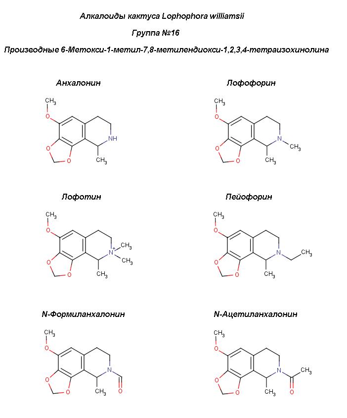 Peyot_6-methoxy-MD-isoq