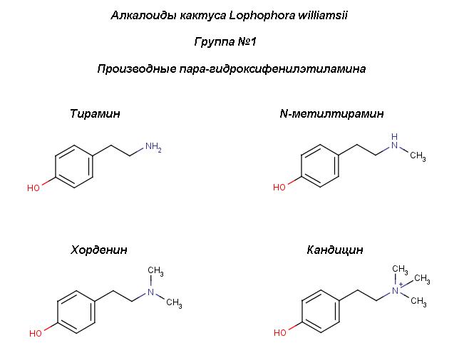 Peyot_4-hydroxy