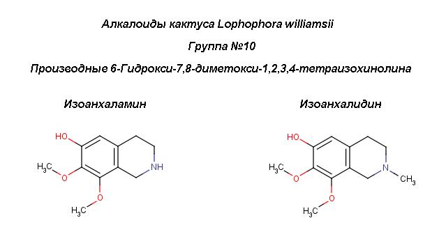 Peyot_6-Hydroxy-7,8-dimetoxy_isoq
