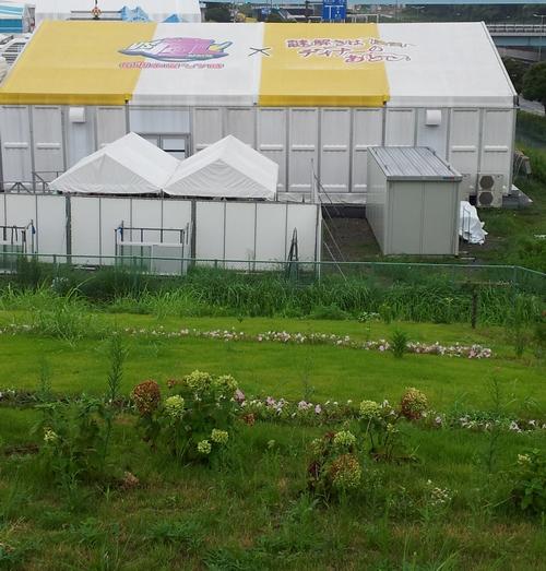 padiglione Vs Arashi Odaiba