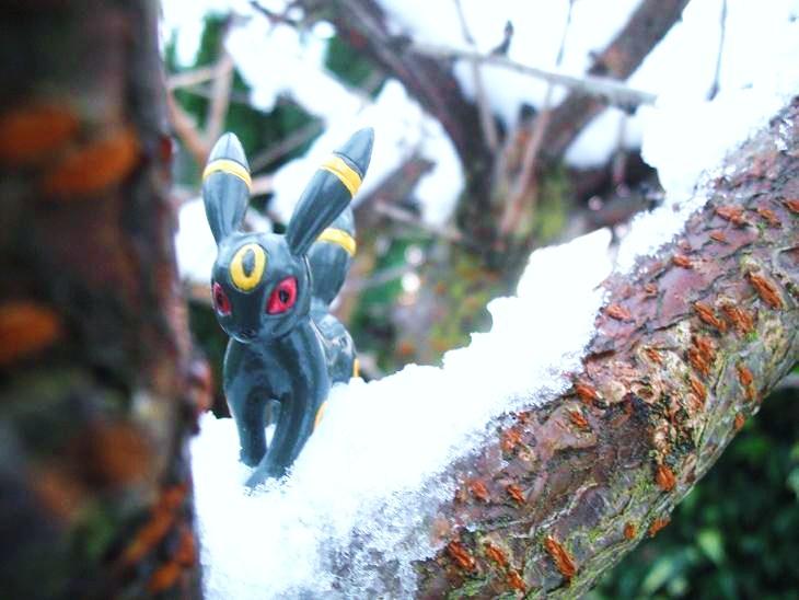 Umbreon branch snow