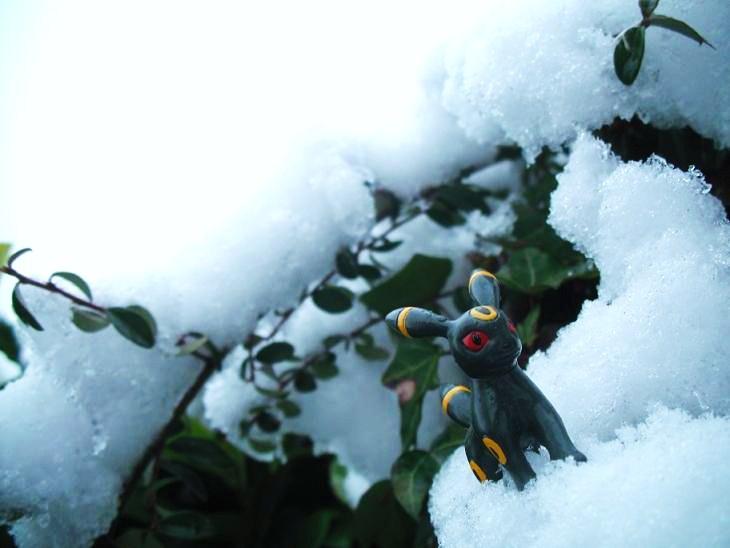 Umbreon snow greenery