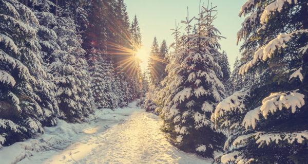 Winter-Solstice-Trivia-Forecast-Weather-i615101076-600x319