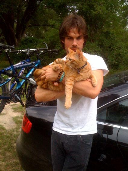cat-guy-Ian-Somerhalder