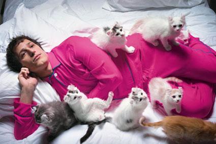 Andy Samberg Laser Cats