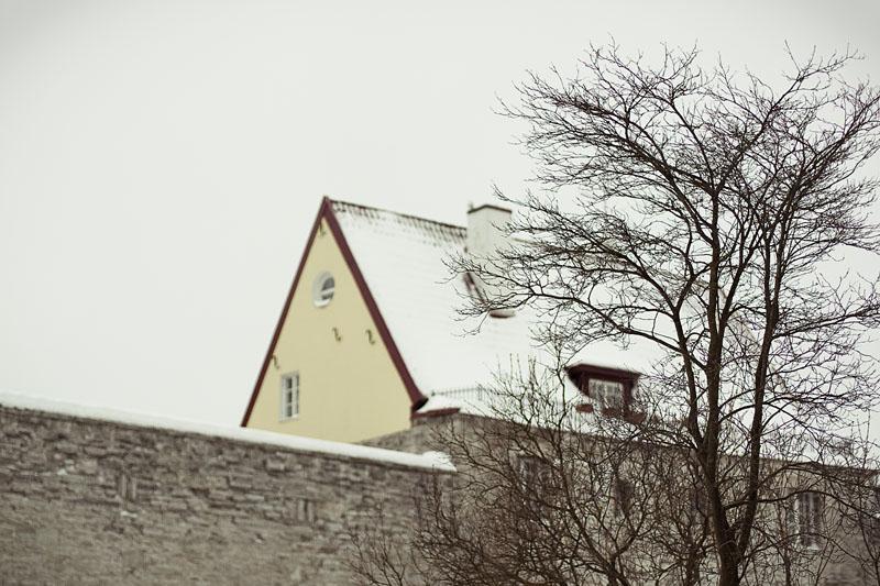 Tallinnwin03
