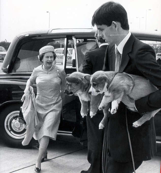 00BC3E7C00000190-3161789-The_Queen_s_Corgi_puppies_are_carried_ahead_of_her_flight_from_L-a-4_1436956314290