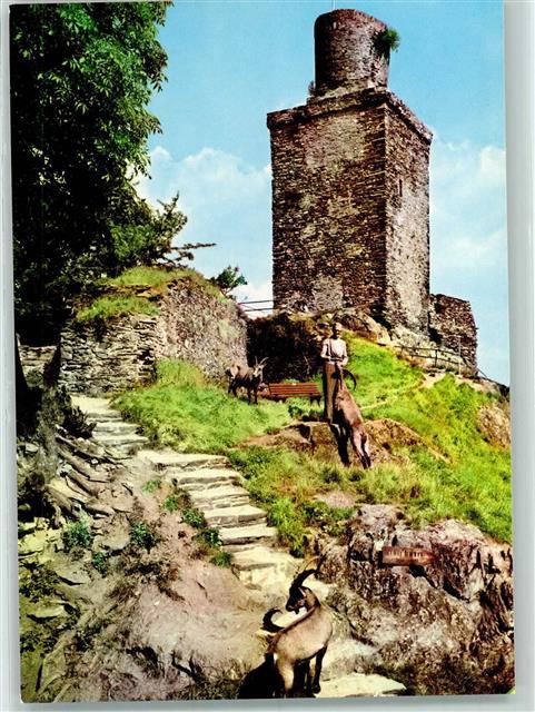 Falkensteiner Burg mit Steinböcken: Noch als Kind gab es dort eine Herde halb frei lebender Steinböcke