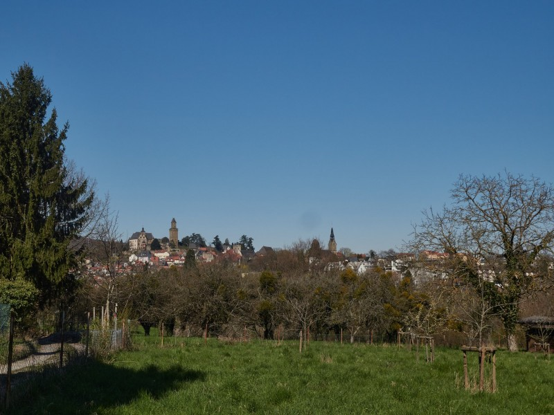 Am Friedhof dann ein schöner Blick auf Kronberg