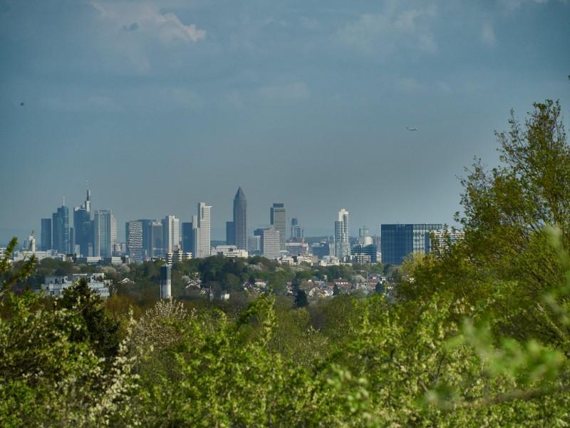 Nochmal das Panorama der Frankfurter Skyline - mit Flieger, der sich ins Bild gemogelt hat